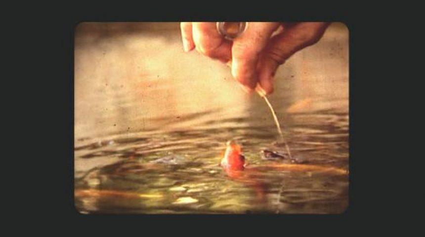 eix-el-domador-de-peixos-52863